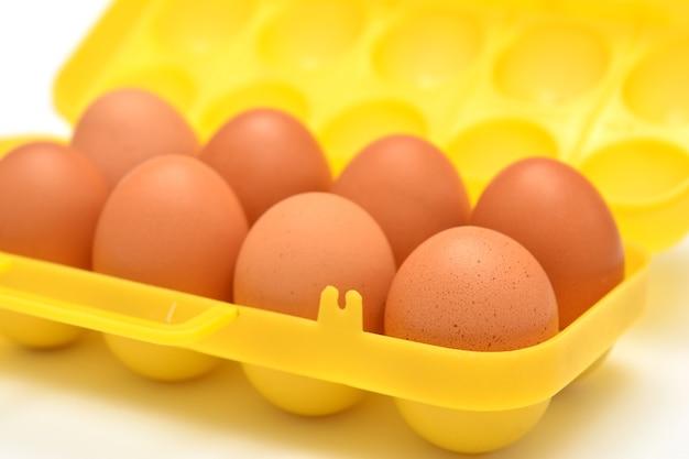 白い背景の上のプラスチック容器の卵
