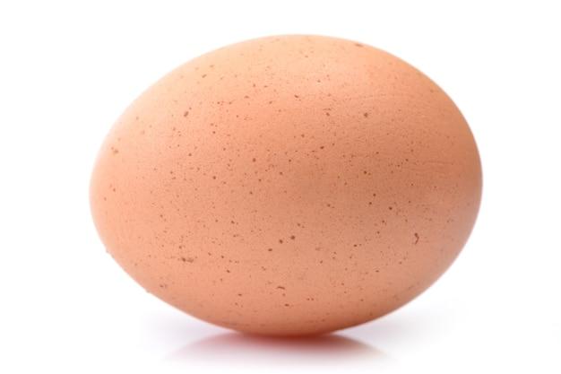 孤立した白い背景の卵
