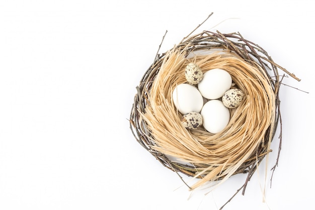 Eggs in the nest on the white background