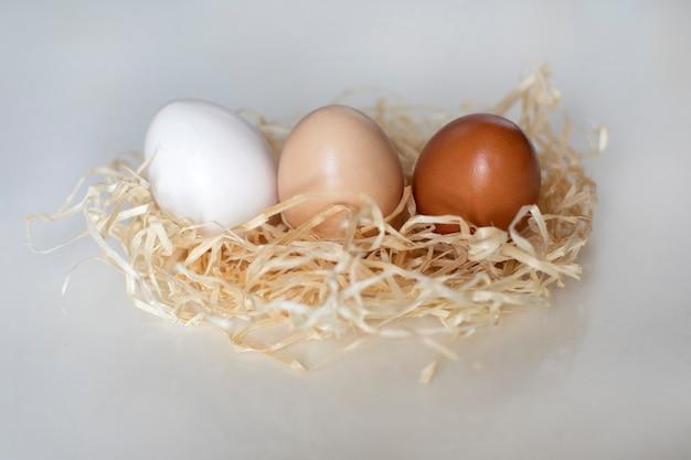 巣の中の異なる色の卵