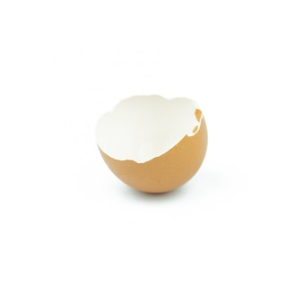 卵シェル、白で隔離