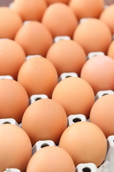 Eggs in tray, close up.