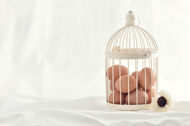 Eggs in vintage cage isolated on white background