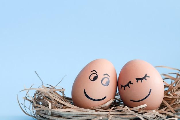 それらにスマイリーフェイスの卵は水色の背景で巣に横たわっています