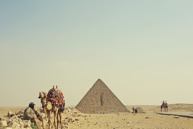 Egyptian desert landscape with pyramid, camels and men