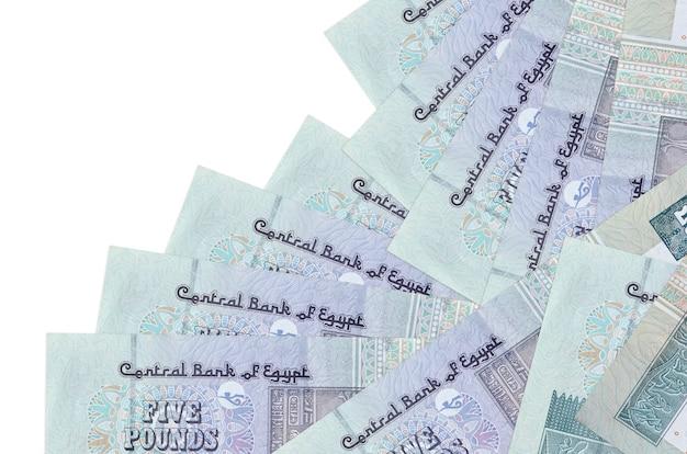 Банкноты египетских фунтов, лежащие в разном порядке на белой поверхности