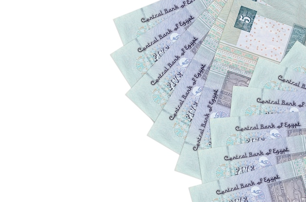 Egyptian pounds bills lies isolated on white background
