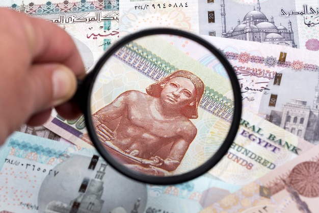Egyptian pounds in a magnifying glass a business background