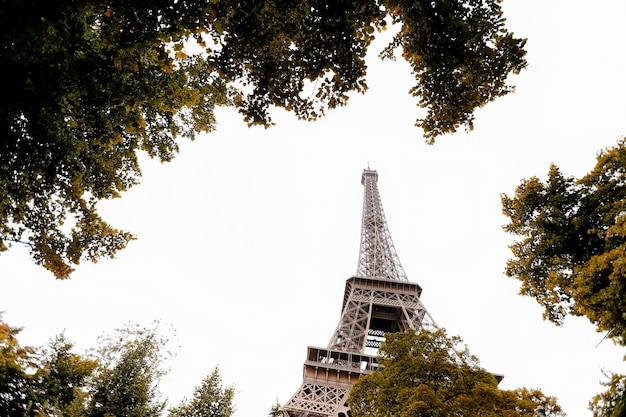 Eiffel tower in autumn. france trip during vacation. high quality photo