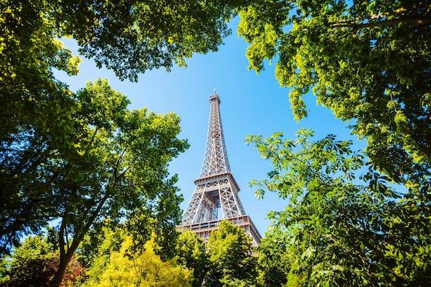 Эйфелева башня в париже, франция сквозь деревья