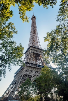 The eiffel tower, initially called the 300-meter tower, is a rough-hewn iron structure. it is located in paris, on the banks of the seine. symbol of france and its capital.
