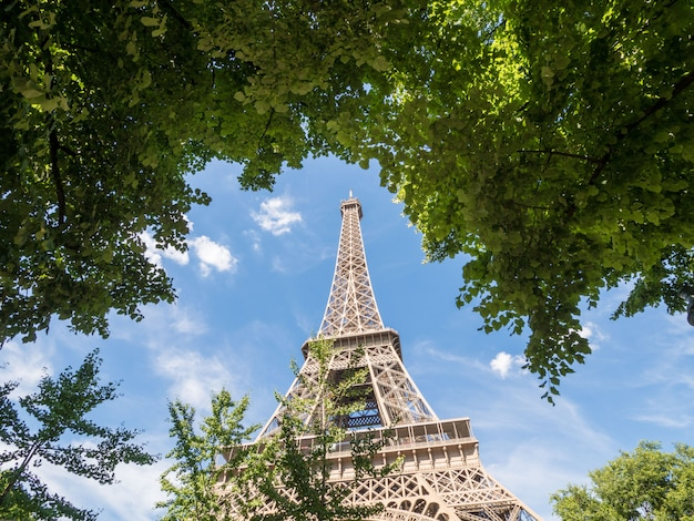 The eiffel tower in paris on a background of blue sky and tree leaves, big plane.