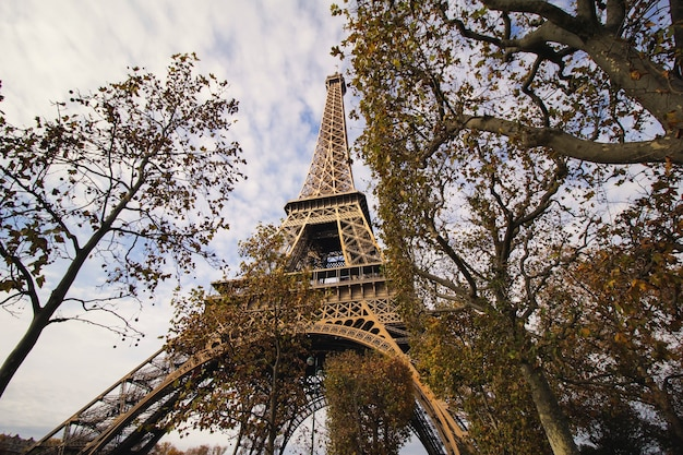 Eiffel tower's view from the park