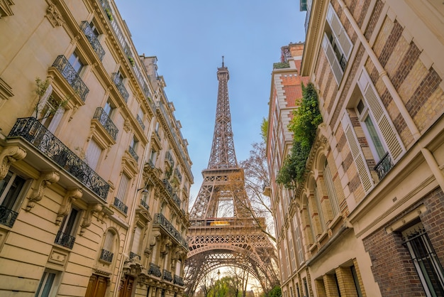 The eiffel tower and vintage buildings in paris, france.