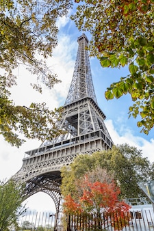 Eiffel tower in yellow-red autumn leaves against a bright blue sky.