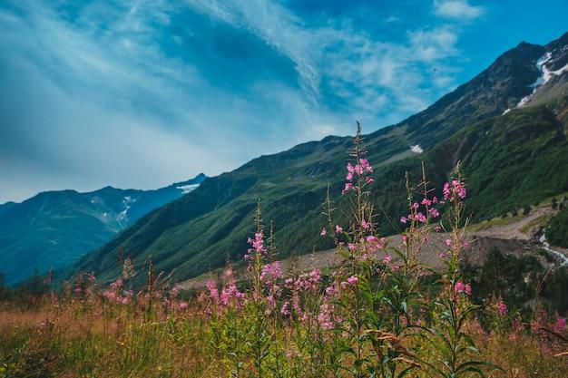 エルブラス山、夏の山。エルブラス山からのコーカサス山脈