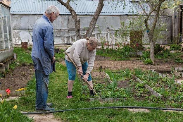 彼女の庭で働く老夫婦