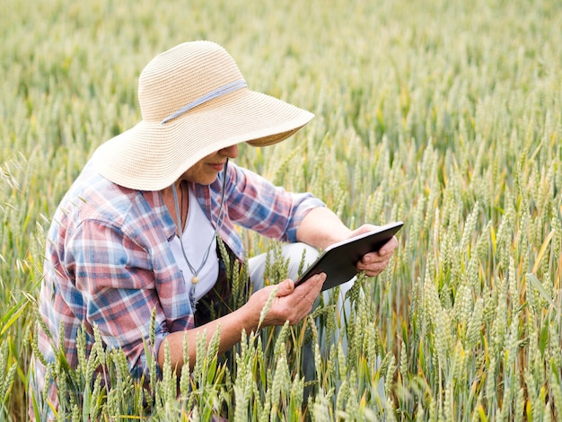 Elder woman sitting on a wheat field while holding a tablet
