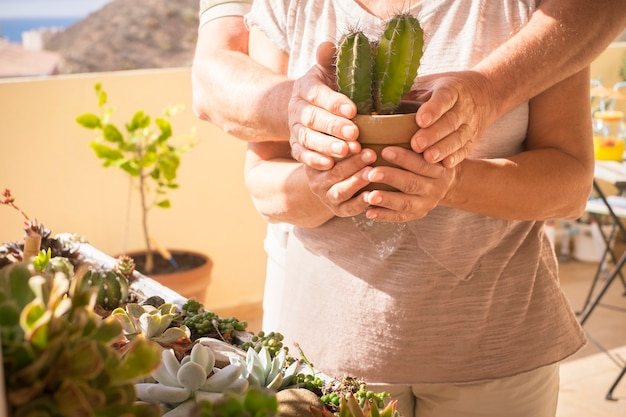 Elderly couple holding a cactus plant with hands