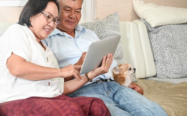 Elderly couple make video call by digital tablet on sofa in the house with a chihuahua dog.