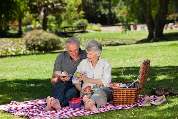 Elderly couple  picnicking in the garden