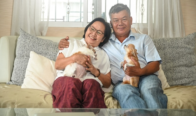Elderly couple resting on the sofa with a chihuahua.