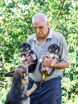 An elderly man holds two puppies in hand and a dog-mom looks at his children