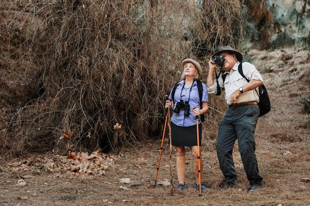 자연의 아름다움을 느끼는 노인 여행자