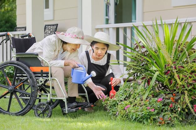 娘と裏庭でガーデニングをする年配の女性