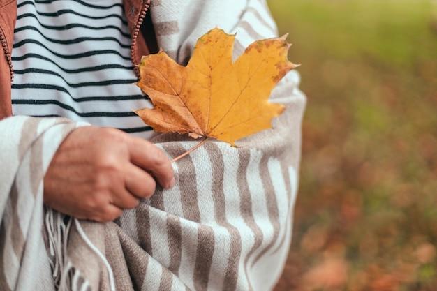 Пожилая женщина рука кленовый лист осень осень сезон