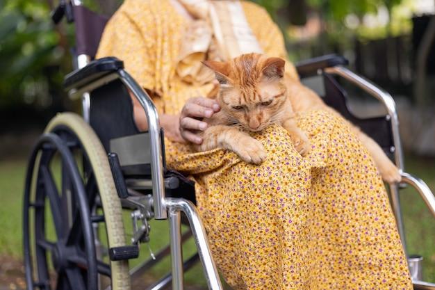 裏庭の車椅子に生姜猫を保持している年配の女性