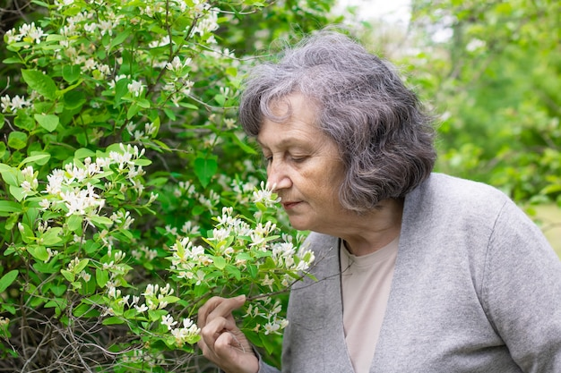 할머니는 봄 꽃 향기를 들이마신다. 노인 여성은 공원의 꽃 덤불에서 꽃 냄새를 즐긴다