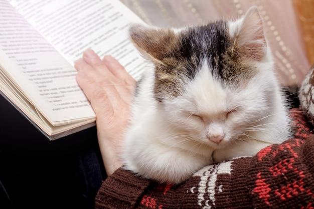 高齢者の女性が猫と読書