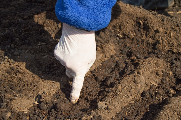 An elderly woman in rubber gloves sows seeds in the soil in her garden