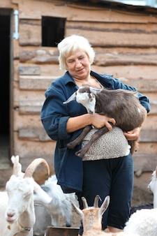 子羊の山羊と年配の女性