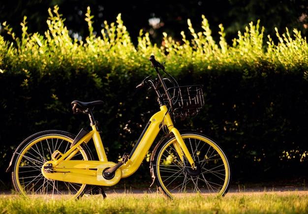 電気自転車、公園で黄色の電気自転車