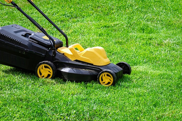 Electric grass mower trimming green lawn