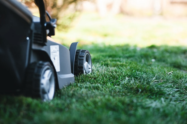 Electric lawn mower on a lawn at the garden