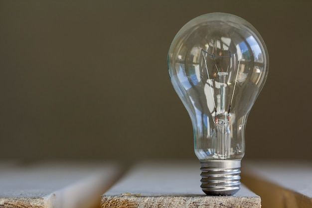 Electric light bulb on blurred scene.
