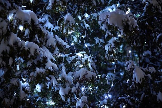 屋外のクリスマスツリーの枝に電灯の花輪