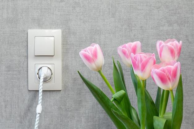 전등 스위치와 빈 회색 벽에 소켓과 근처의 튤립 꽃다발