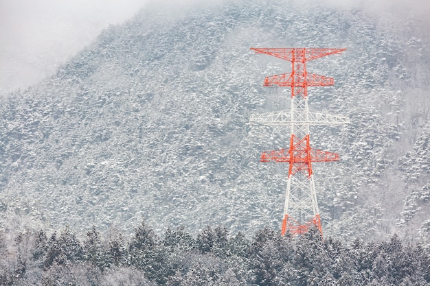 Electric pole winter landscape