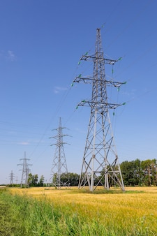 Electric pylons on summer wheat field against sky