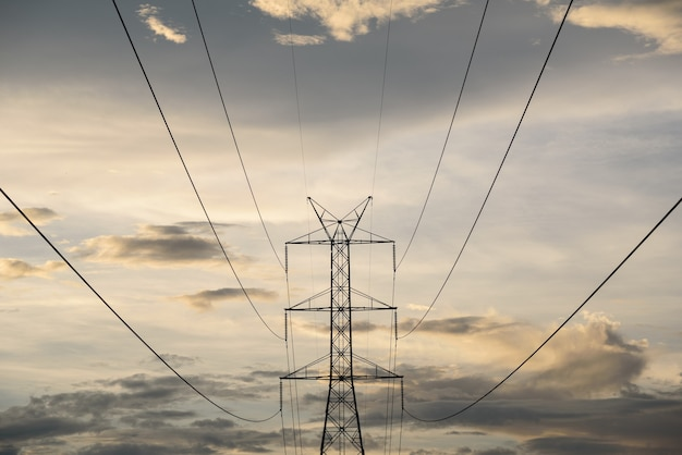 Electrical power line and tower