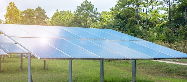 숲의 전기 태양 광 발전 시스템