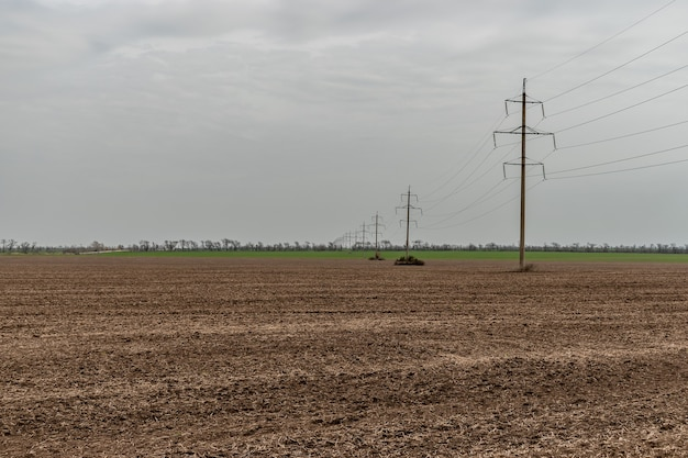 Electricity poles in a field