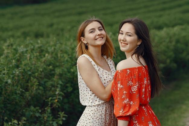 Элегантные и стильные девушки в летнем поле