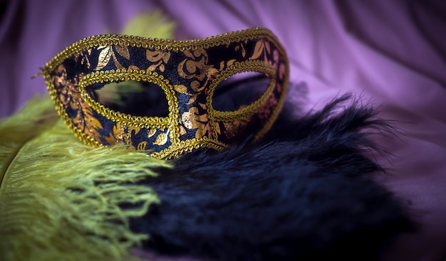 Elegant carnival mask detail with feathers background