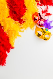 Elegant carnival masks with feathers