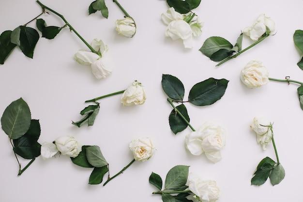 Элегантная цветочная композиция с белыми розами и местом для текста на белом фоне. вид сверху Premium Фотографии